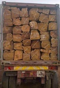 非洲原木进口案例