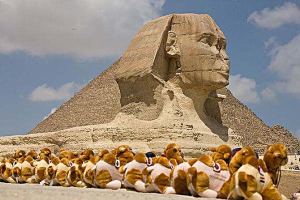 埃及在盖洛普法律与秩序指数中排名全球第八