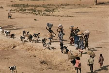 肯尼亚3/4的大米都来自进口