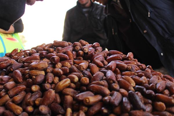 摩洛哥椰枣,了解一下