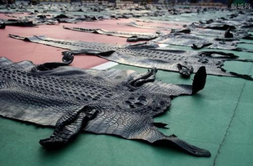 对鳄鱼皮征收10%的出口关税严重损害了农场主的利益