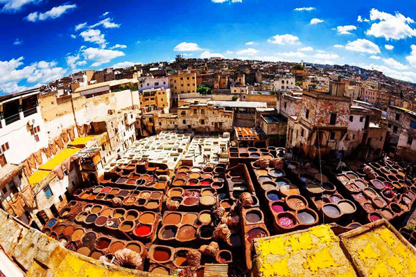 旅游业成为突尼斯国家外汇收入的主要来源之一