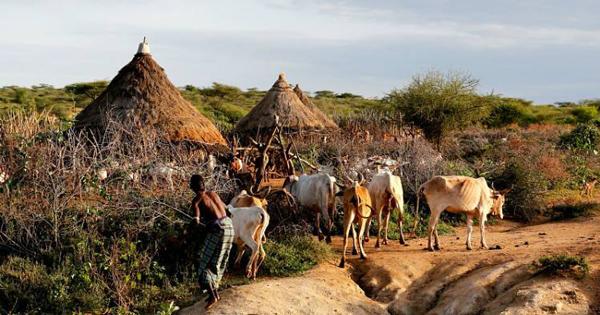 那个还是以原材料出口为主的非洲国家——津巴布韦