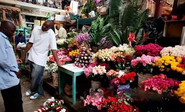 因为疫情,非洲多个花卉和茶叶拍卖市场均受影响