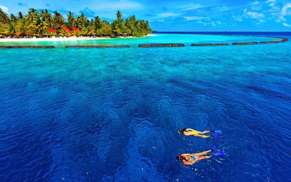去马达加斯加旅游,哪些产品不能带出?