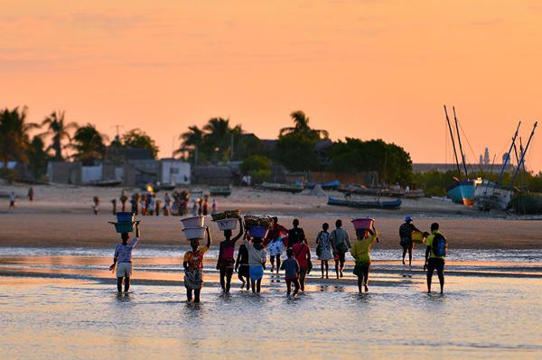加纳政府推进捕鱼业可持续发展